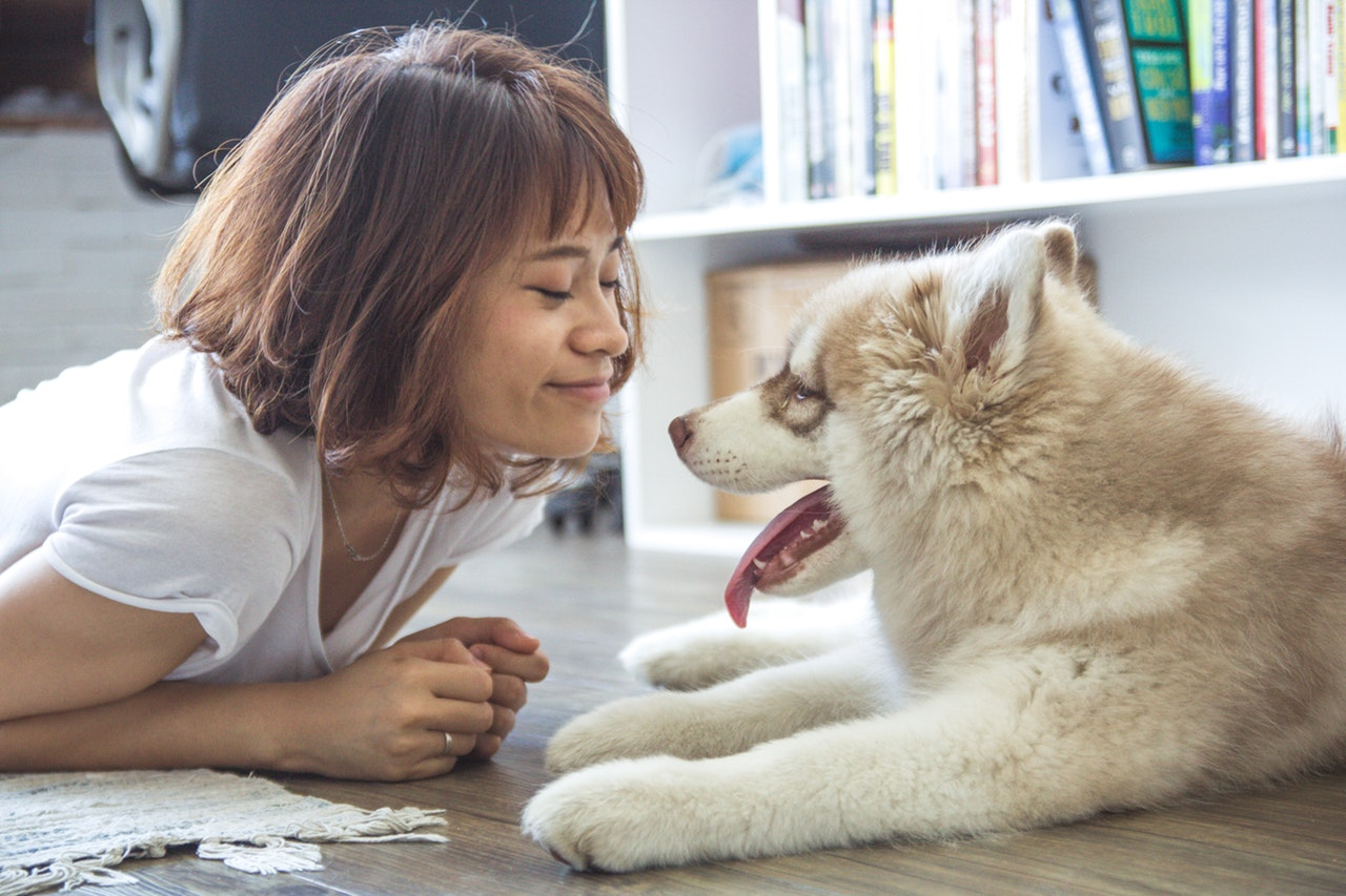 woman with dog during animal assisted therapy