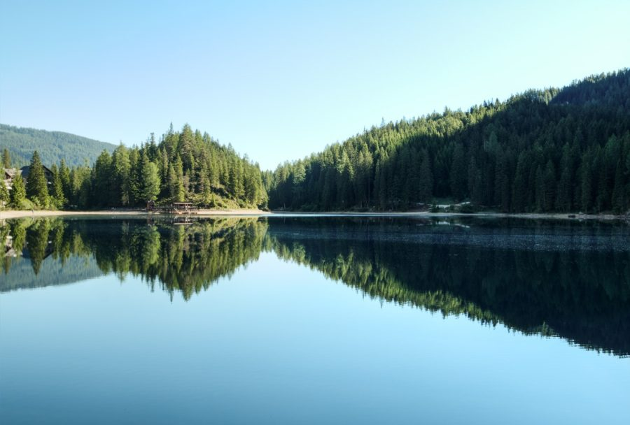 how nature benefits mental health