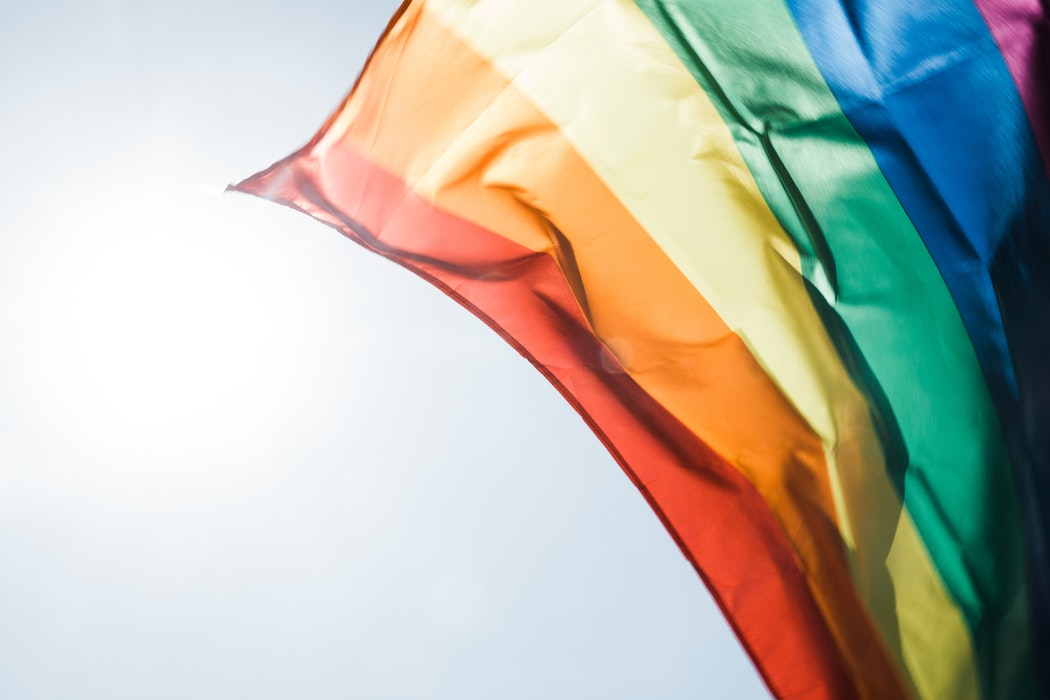 LGBTQ+ Rights, Calli Institute